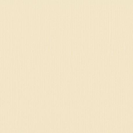 "Florence cardstock texture (simil bazzil) 12x12"" 216gr raffia"