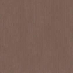 "bear - Florence cardstock texture (simil bazzil) 12x12"" 216gr"