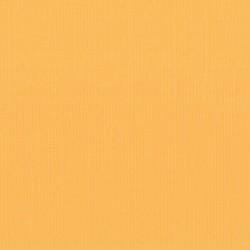 "Florence cardstock texture (simil bazzil) 12x12"" 216gr mango"