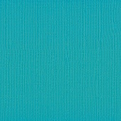 "Florence cardstock texture (simil bazzil) 12x12"" 216gr frosting"