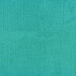 "Florence cardstock texture (simil bazzil) 12x12"" 216gr spa"
