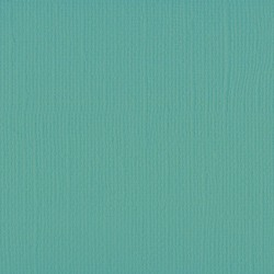 "Florence cardstock texture (simil bazzil) 12x12"" 216gr sage"