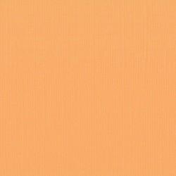 "Florence cardstock texture (simil bazzil) 12x12"" 216gr grapefruit"