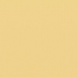 "Florence cardstock texture (simil bazzil) 12x12"" 216gr corn"