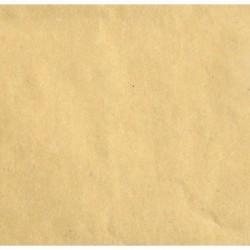 """Florence cardstock paper 12x12"""" 216gr Kraft light"""
