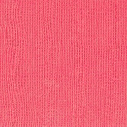 """Florence cardstock texture (simil bazzil) 12x12"""" 216gr anemone"""