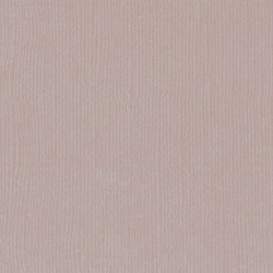 """Rhino - Florence cardstock texture (simil bazzil) 12x12"""" 216gr"""