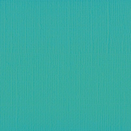 """Florence cardstock texture (simil bazzil) 12x12"""" 216gr spa"""