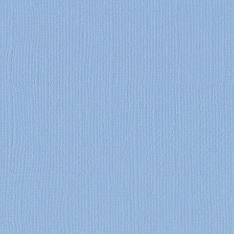 """Florence cardstock texture (simil bazzil) 12x12"""" 216gr water"""