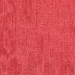 "Poppy - Florence cardstock texture (simil bazzil) 12x12"" 216gr"