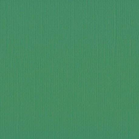 "Florence cardstock texture (simil bazzil) 12x12"" 216gr grasshopper"