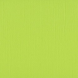 "Lime - Florence cardstock texture (simil bazzil) 12x12"" 216gr"