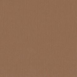 """Lion - Florence cardstock texture (simil bazzil) 12x12"""" 216gr"""