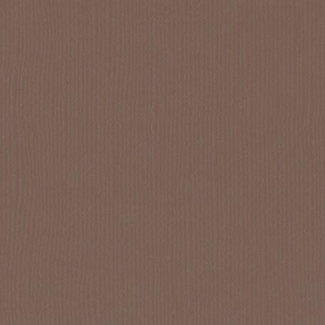 "Florence cardstock texture (simil bazzil) 12x12"" 216gr bear"