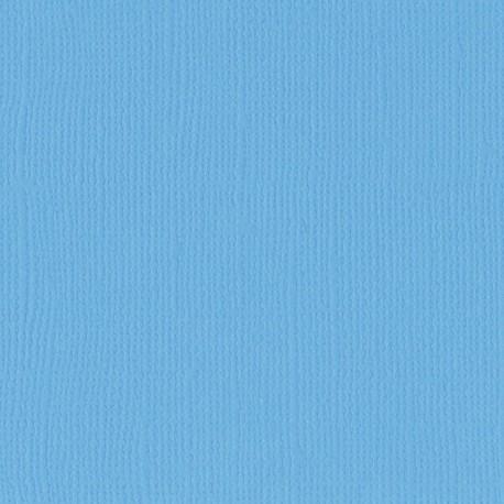 "Florence cardstock texture (simil bazzil) 12x12"" 216gr river"
