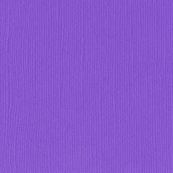 "Violet - Florence cardstock texture (simil bazzil) 12x12"" 216gr"