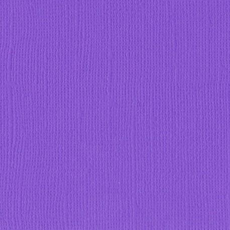 "Florence cardstock texture (simil bazzil) 12x12"" 216gr violet"