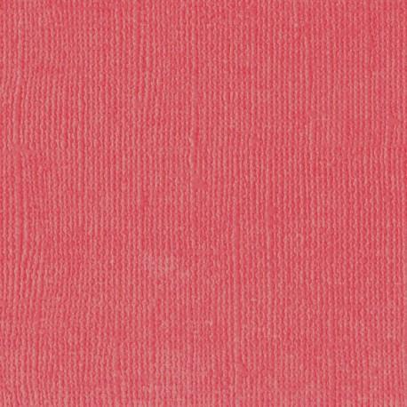 "Florence cardstock texture (simil bazzil) 12x12"" 216gr kiss"
