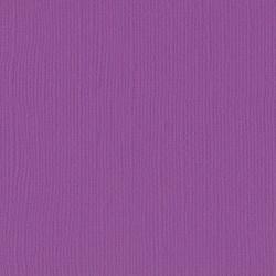 "Plum - Florence cardstock texture (simil bazzil) 12x12"" 216gr"
