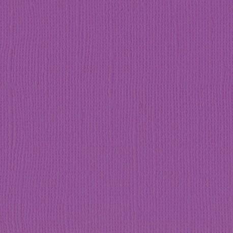 "Florence cardstock texture (simil bazzil) 12x12"" 216gr plum"