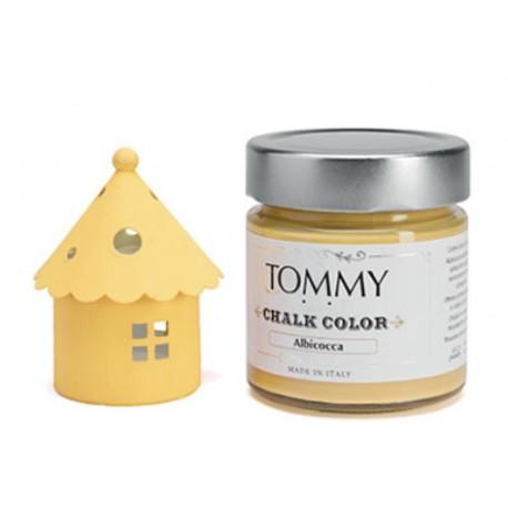 Chalk Color Tommy Art 80 ml - Albicocca