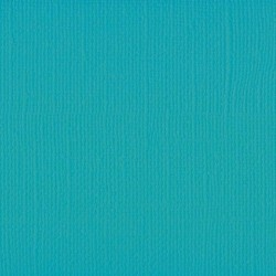 Frosting -10 fogli Florence cardstock texture (simil bazzil) A4 216gr
