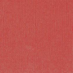 "Florence cardstock texture (simil bazzil) 12x12"" 216gr rhubarb"
