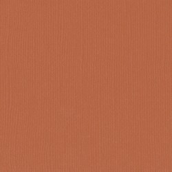 "Florence cardstock texture (simil bazzil) 12x12"" 216gr fox"