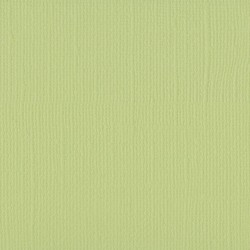 """Florence cardstock texture (simil bazzil) 12x12"""" 216gr anise"""