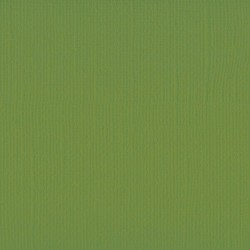"Florence cardstock texture (simil bazzil) 12x12"" 216gr olive"