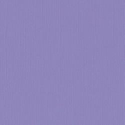 """Florence cardstock texture (simil bazzil) 12x12"""" 216gr purple"""