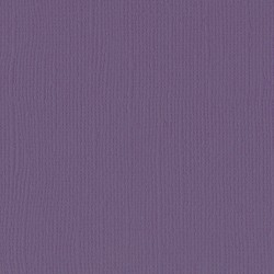 "Florence cardstock texture (simil bazzil) 12x12"" 216gr clematis"