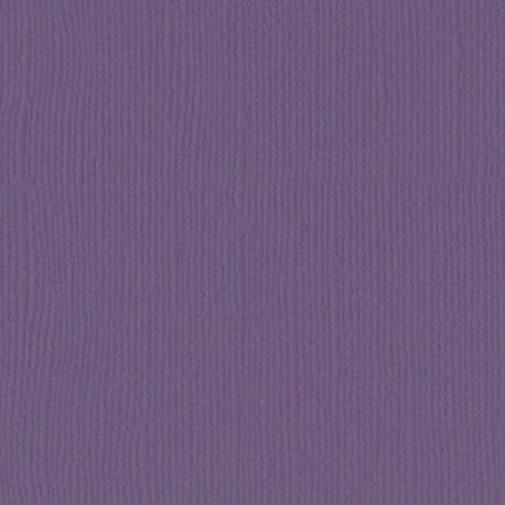 "Florence cardstock texture (simil bazzil) 12x12"" 216gr clematis"