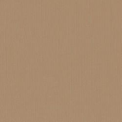 "Florence cardstock texture (simil bazzil) 12x12"" 216gr peanut"