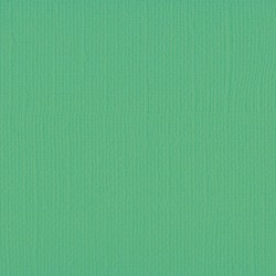 "Florence cardstock texture (simil bazzil) 12x12"" 216gr emerald"