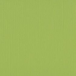 """Florence cardstock texture (simil bazzil) 12x12"""" 216gr pistachio"""