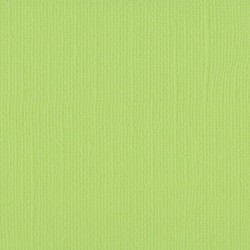 "Florence cardstock texture (simil bazzil) 12x12"" 216gr celery"