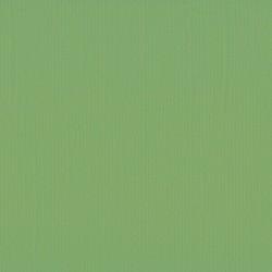 "Florence cardstock texture (simil bazzil) 12x12"" 216gr moss"