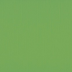 """Florence cardstock texture (simil bazzil) 12x12"""" 216gr frog"""