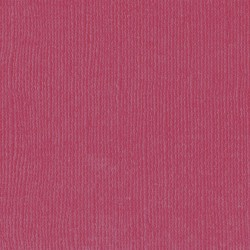 "Florence cardstock texture (simil bazzil) 12x12"" 216gr cassis"