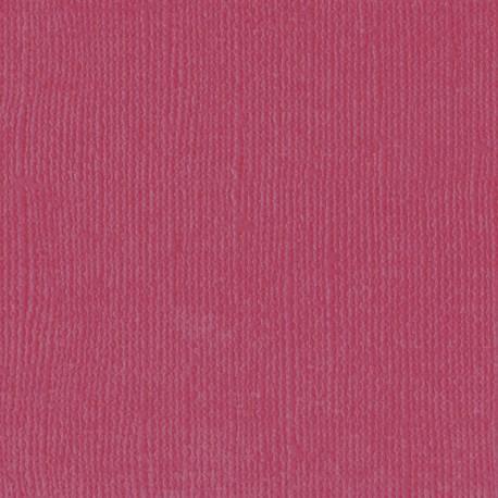 "Florence cardstock texture (simil bazzil) 12x12"" 216gr cassis"
