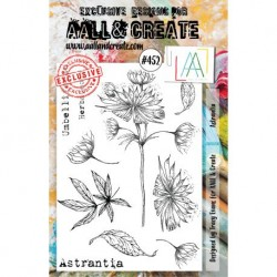 Timbri Aall & Create Stamp Set -452