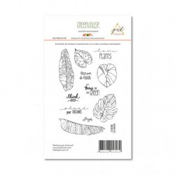 Timbri Clear Stamps PaperNova Design - Greenhouse-1