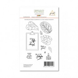 Timbri Clear Stamps PaperNova Design - Greenhouse-3