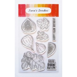 Timbri Clear Stamps Jane's Doodles - What the Fig